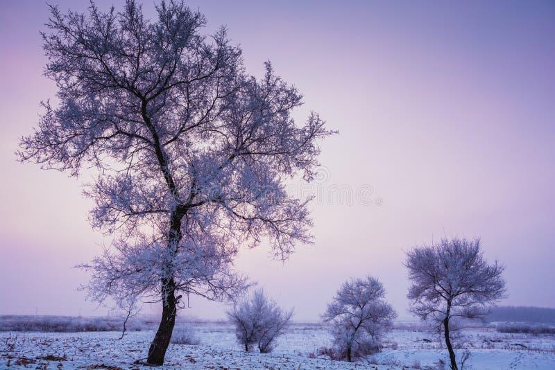 Naturaleza del paisaje imagenes de archivo