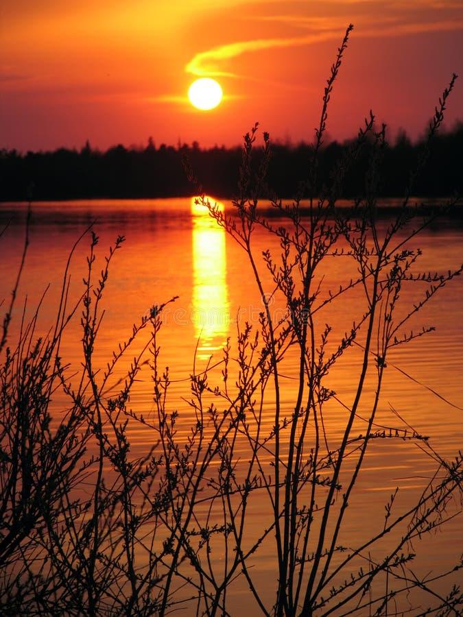 Naturaleza del paisaje Bosque y río en la puesta del sol fotos de archivo libres de regalías