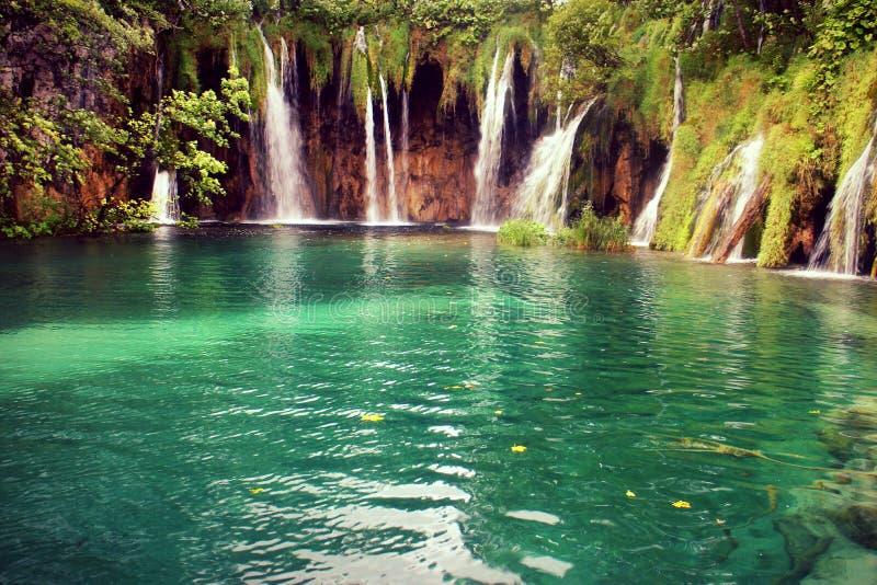 Naturaleza del paisaje del parque nacional del verano 2016 de Plitvice Croacia fotografía de archivo libre de regalías