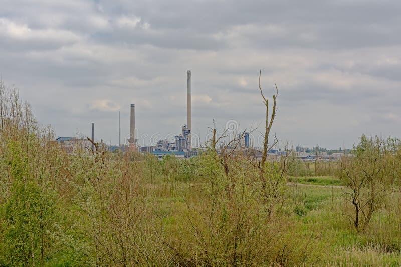 Naturaleza e industria - edificios industriales en el puerto de Amberes sean de la frontera verde en el otro lado del río Escalda imagen de archivo