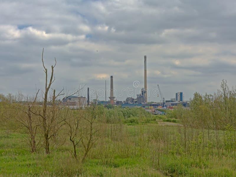 Naturaleza e industria - edificios industriales en el puerto de Amberes sean de la frontera verde en el otro lado del río Escalda imágenes de archivo libres de regalías