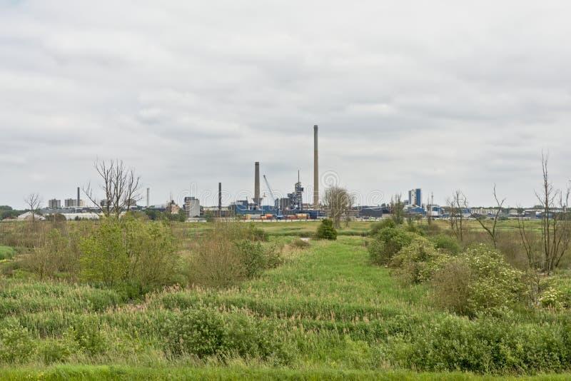 Naturaleza e industria - edificios industriales en el puerto de Amberes sean de la frontera verde en el otro lado del río Escalda fotografía de archivo libre de regalías