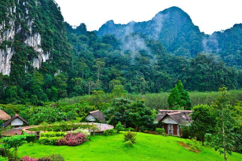 Naturaleza en KhaoSok, Tailandia foto de archivo