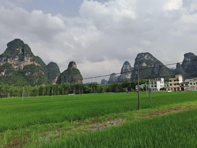 Naturaleza en sur de China, imágenes de archivo libres de regalías