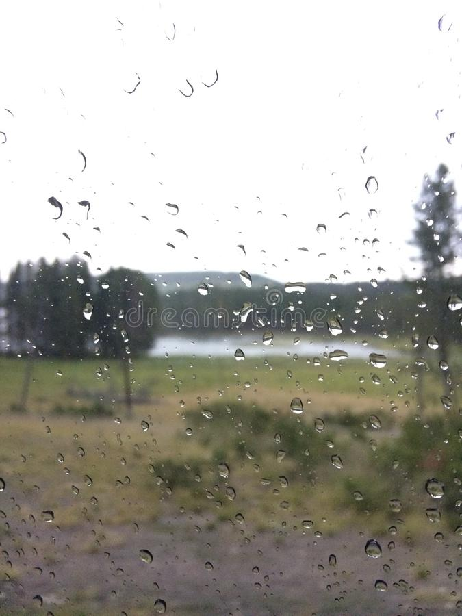 Naturaleza fuera de una ventana con las gotitas de la lluvia fotografía de archivo libre de regalías