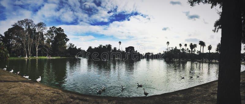 naturaleza hermosa del lago fotos de archivo