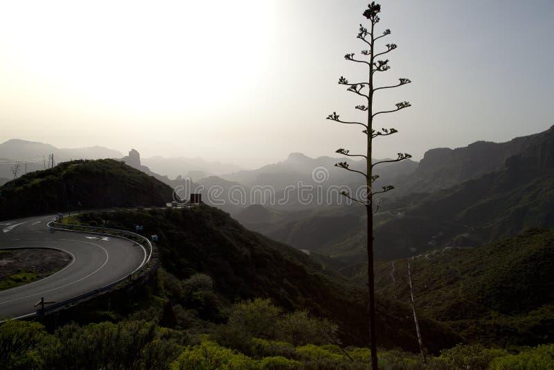 Naturaleza imponente en las montañas Cruz de Tejeda en Gran Canaria, Canarias debajo de la bandera española fotografía de archivo libre de regalías