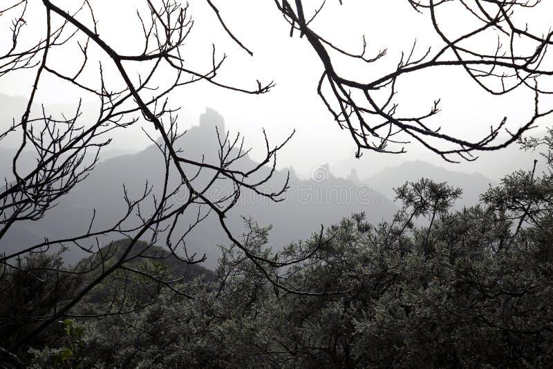 Naturaleza imponente en las montañas Cruz de Tejeda en Gran Canaria, Canarias debajo de la bandera española imagen de archivo libre de regalías