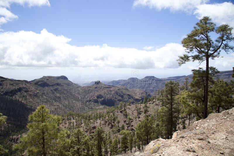 Naturaleza imponente en las montañas de Gran Canaria, Canarias debajo de la bandera española fotos de archivo