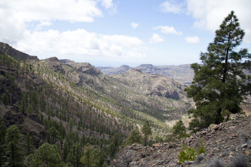 Naturaleza imponente en las montañas de Gran Canaria, Canarias debajo de la bandera española imágenes de archivo libres de regalías