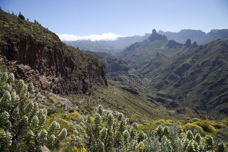 Naturaleza imponente en las montañas de Gran Canaria, Canarias debajo de la bandera española fotografía de archivo libre de regalías