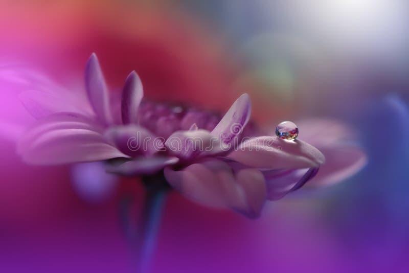 Naturaleza increíblemente hermosa Fotografía del arte Diseño floral de la fantasía Macro abstracta, primer Fondo violeta Flor col foto de archivo
