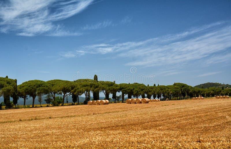 Naturaleza Italia del paisaje imagenes de archivo