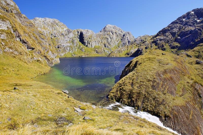 Naturaleza magnífica de Nueva Zelanda foto de archivo libre de regalías