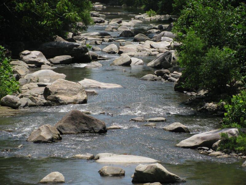 Naturaleza Rock Creek fotografía de archivo libre de regalías
