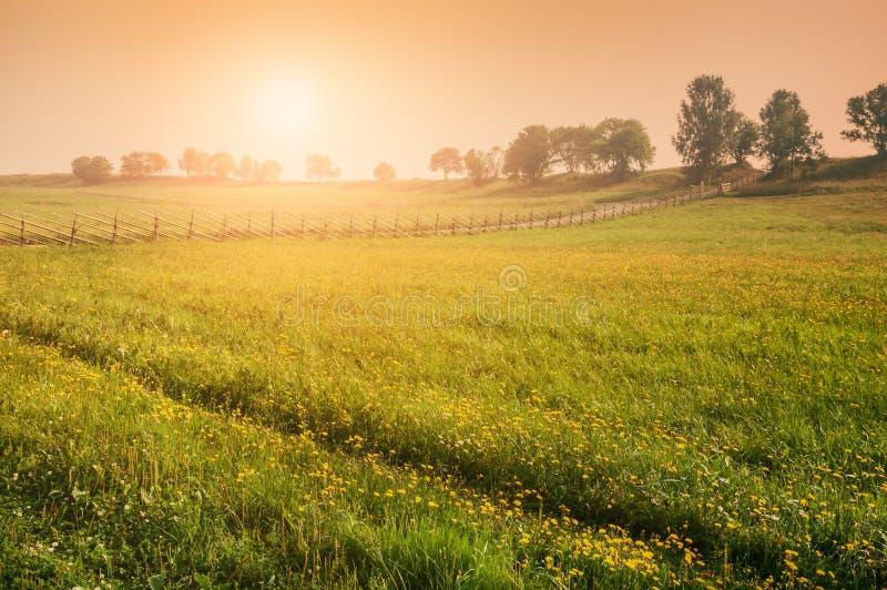 Naturaleza rural en la puesta del sol imágenes de archivo libres de regalías