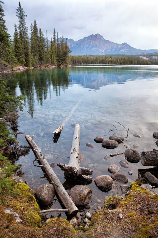 Naturaleza salvaje en Rocky Mountains, orilla del lago imagenes de archivo