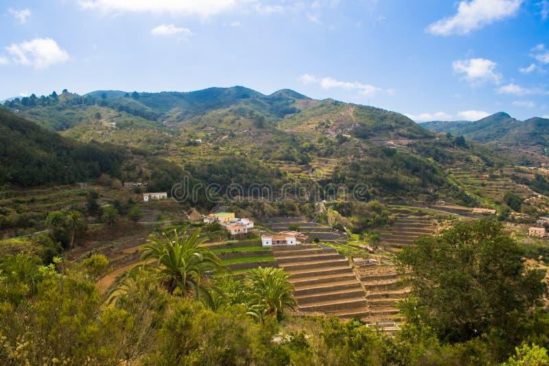 Naturaleza típica en el La Gomera imagenes de archivo
