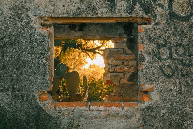 Naturaleza a través de la ventana constructiva abandonada imágenes de archivo libres de regalías