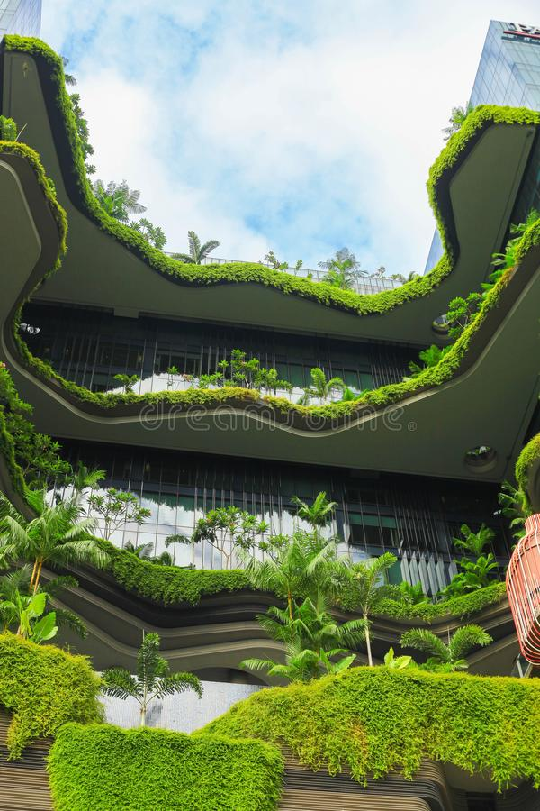 Naturaleza verde Singapur bot?nico foto de archivo