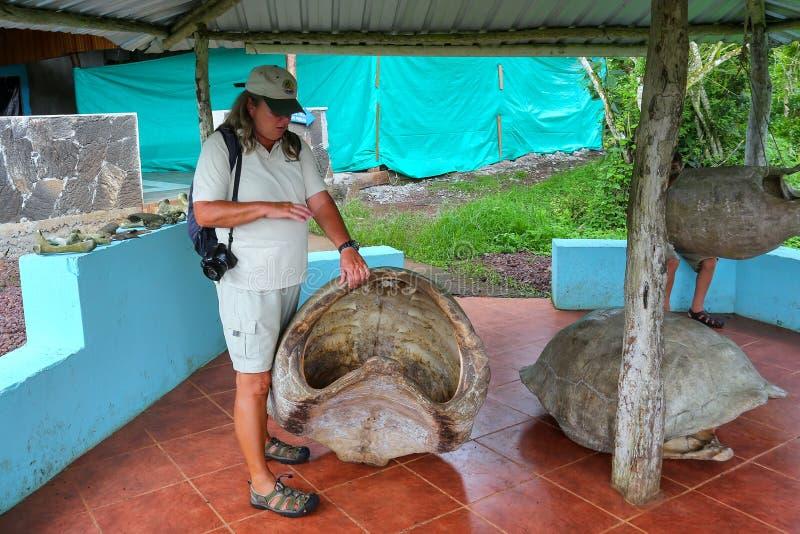 Naturalist som talar om skal Galapagos för jätte- sköldpadda på set arkivfoton