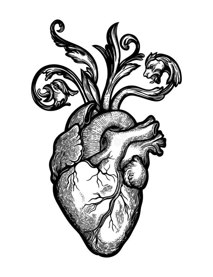 Naturalistic сердце в рамке цветков и терниев Винтажным готическим искусство воодушевленное стилем r иллюстрация вектора
