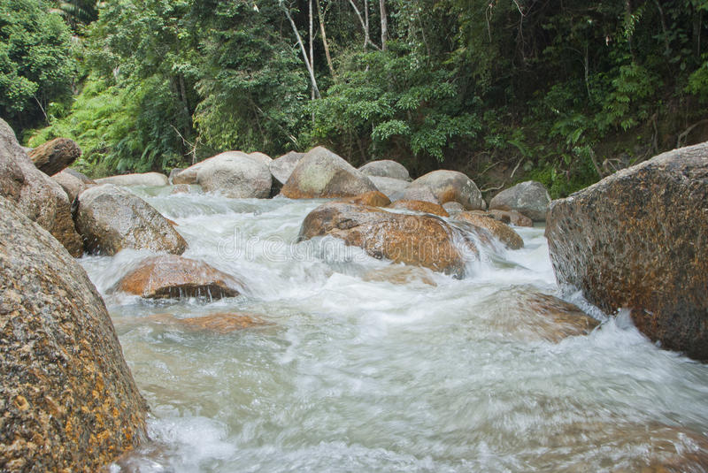 Naturally undeveloped river in Bentong, Pahang, Malaysia. Janda Baik is a popular place for meditation due to the nature peaceful environment stock photos