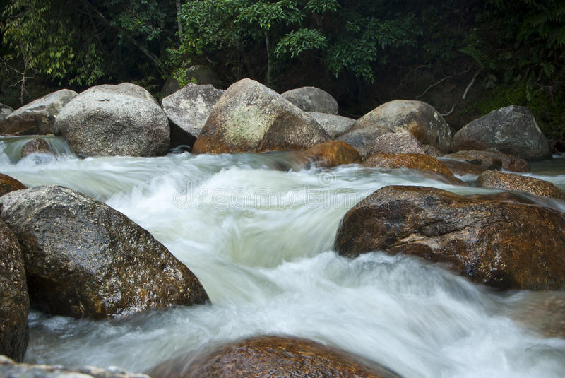 Naturally undeveloped river in Bentong, Pahang, Malaysia. Janda Baik is a popular place for meditation due to the nature peaceful environment royalty free stock images