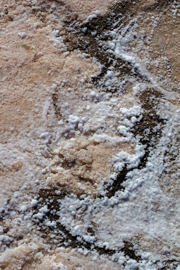 Naturalna, biała struktura krystaliczna na piasku, makro, zamknij Słoneczne tło jeziora zdjęcia royalty free