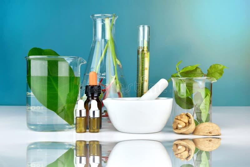 Naturalna organicznie medycyna i opieka zdrowotna, Alternatywna rośliny medycyna obrazy royalty free