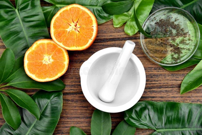 Naturalna organicznie medycyna i opieka zdrowotna, Alternatywna rośliny medycyna fotografia royalty free