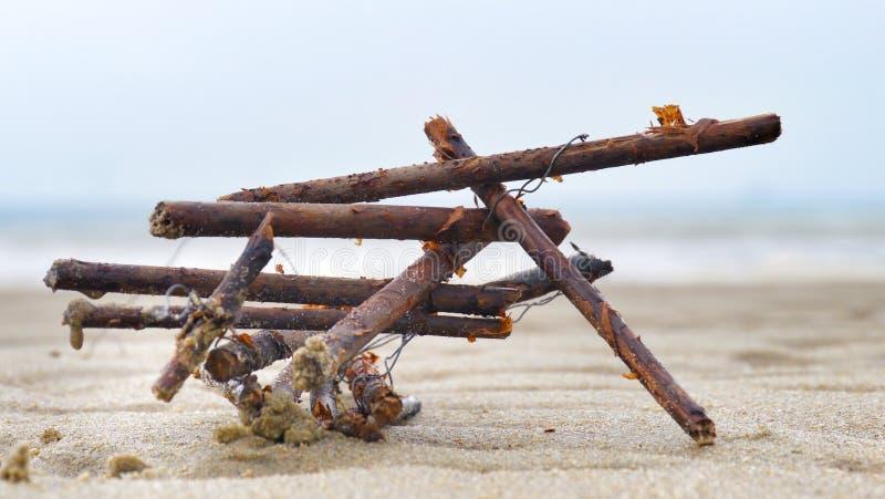 Naturalna sztuka przy plażą obrazy royalty free