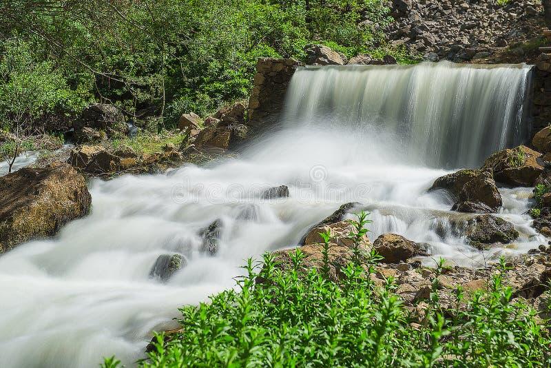 Naturalna woda od głównego źródła fotografia royalty free