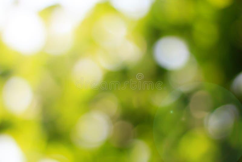 Naturalna zieleń zamazująca i bokeh tło, Abstrakcjonistyczni tła zdjęcia stock
