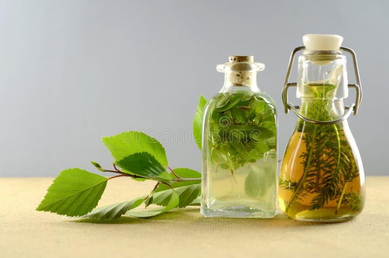 Naturalna ziołowa tinctures medycyna zdjęcie stock