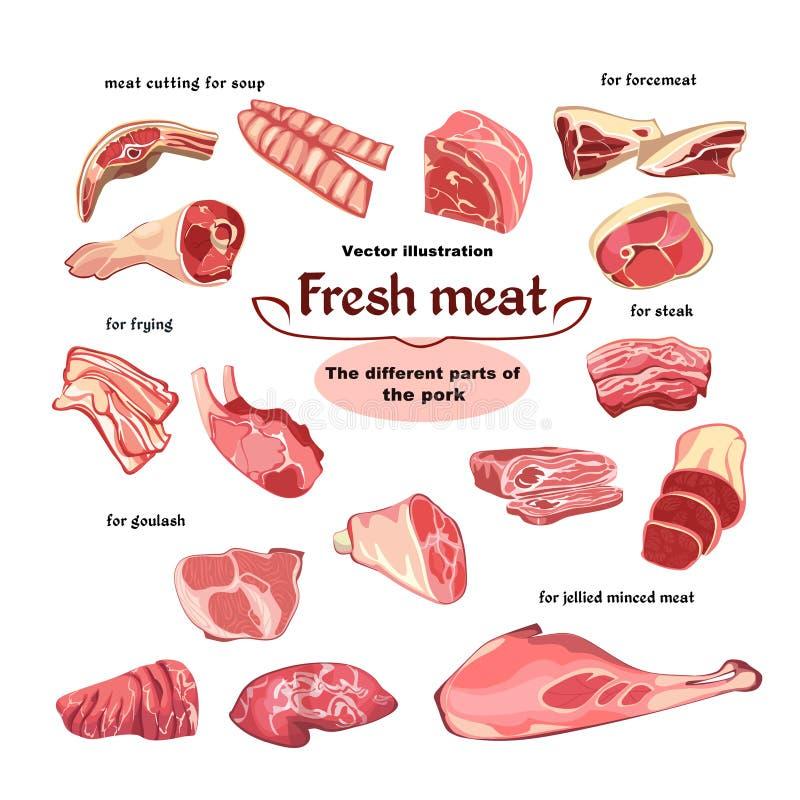 Naturalne Tnące wieprzowiny mięsa części Ustawiać royalty ilustracja