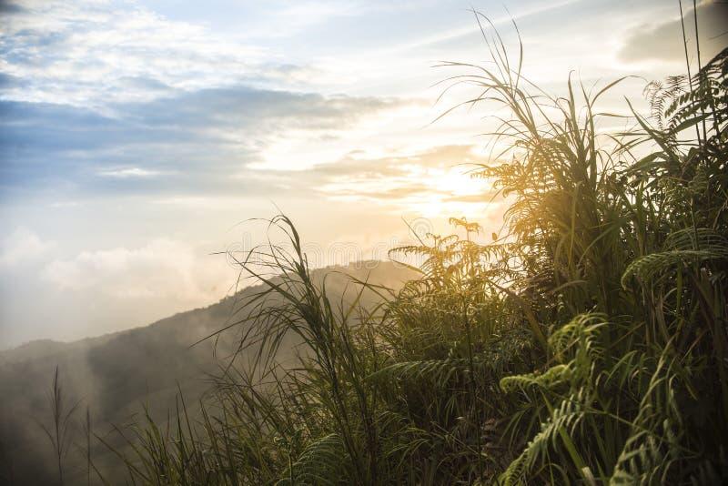 Naturalni krajobrazy fotografia royalty free