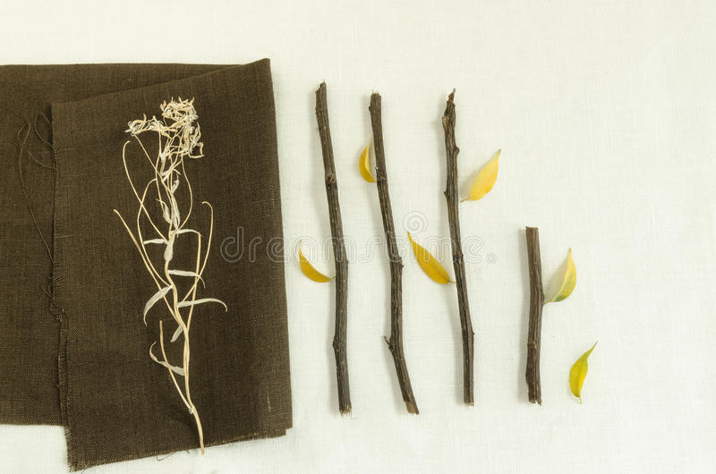 Naturalni materiały: gałązki i suszą liście na bieliźnianej pielusze obraz stock