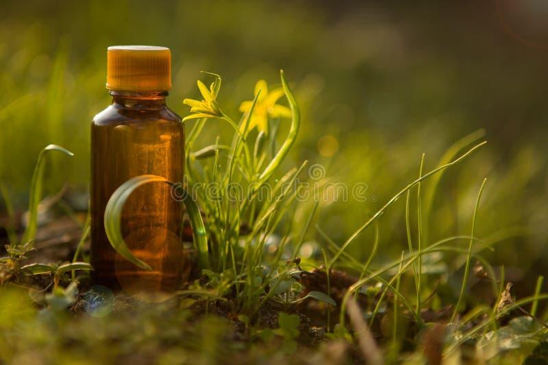 Naturalni remedia, aromatherapy - bach terapia zdjęcia stock