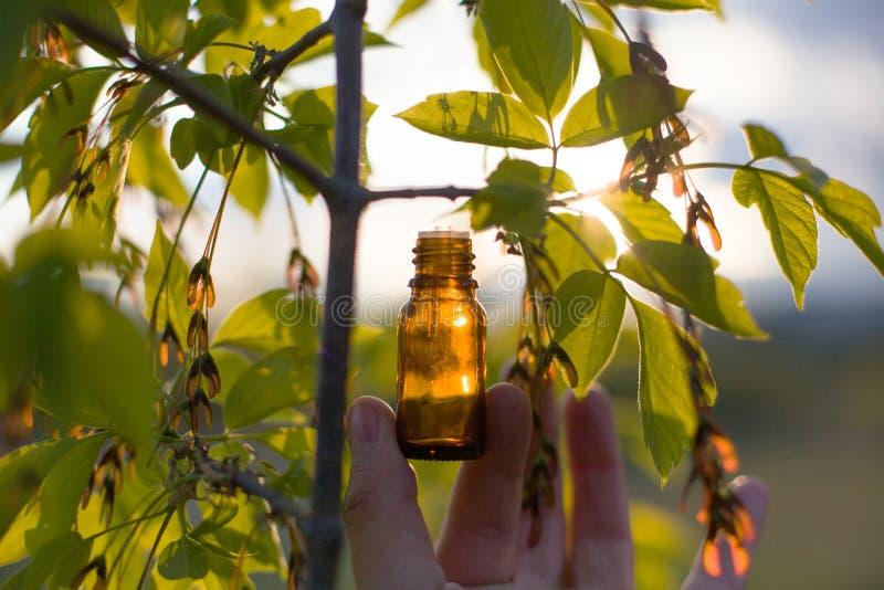 Naturalni remedia - olej, ziołowy zdjęcie royalty free