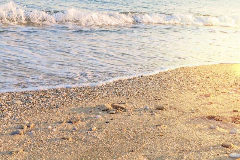 Naturalnie zaokrąglony żwir przy dennym brzeg, natury tła denny tex zdjęcie royalty free