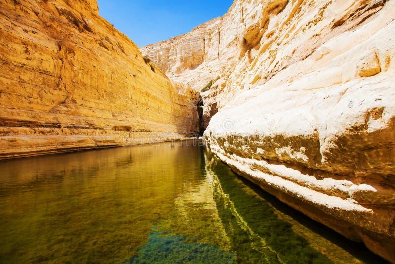 Naturalny źródło woda zdjęcia royalty free