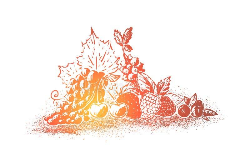 Naturalny deser, dojrzałe jagody, winogrona, truskawka, wiśnia, rodzynek, czarne jagody, czernica, malinki ilustracji