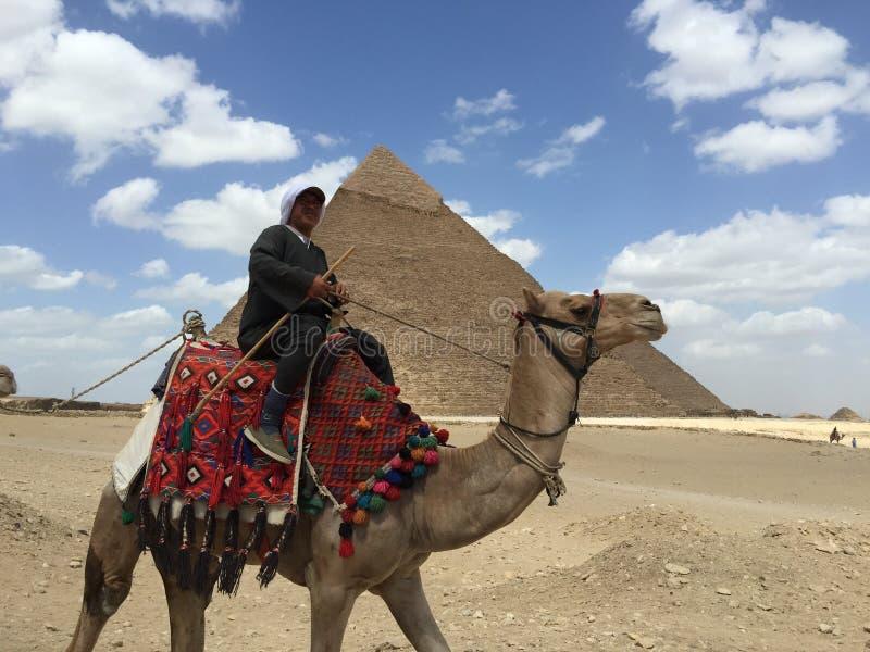 Naturalny Egipski mężczyzna zdjęcie royalty free