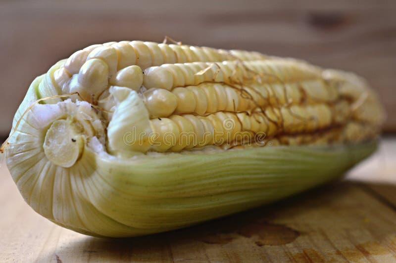 Naturalny i świeży kukurydzany cob obrazy royalty free