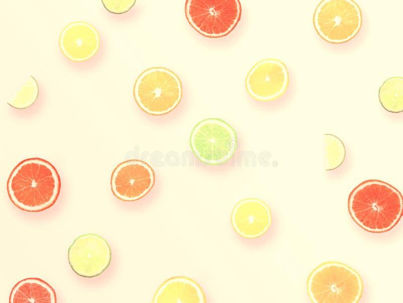 Naturalny Kolorowy Deseniowy tło Robić cytrus owoc Pomarańczowym ilustracja wektor