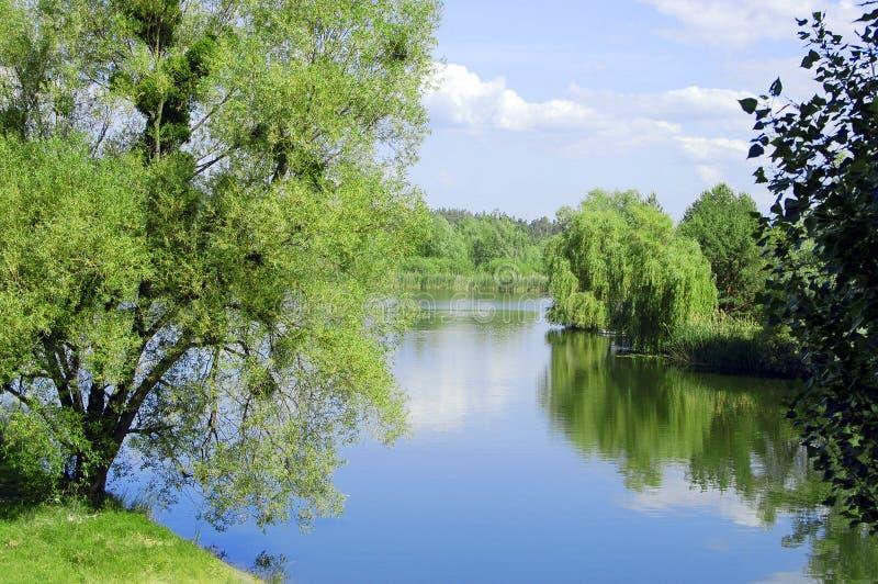Naturalny krajobraz, rzeka, chmurny niebo, wieś obrazy royalty free