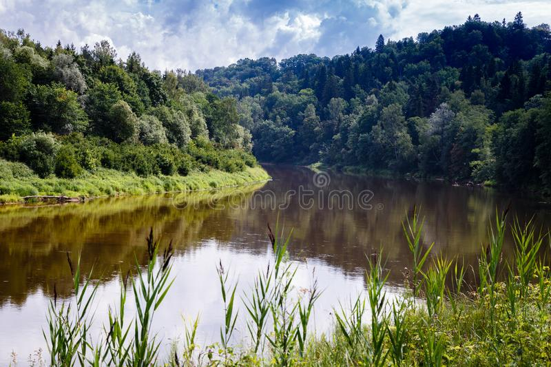 Naturalny krajobraz z rzeką i lasami obrazy royalty free