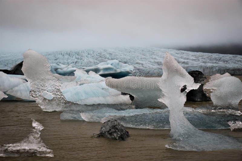 Naturalny lód Scultpures zdjęcie royalty free