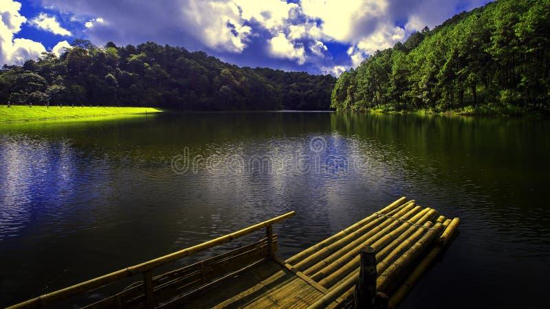Naturalny miejsce spoczynku z drzewami i rzekami obrazy stock